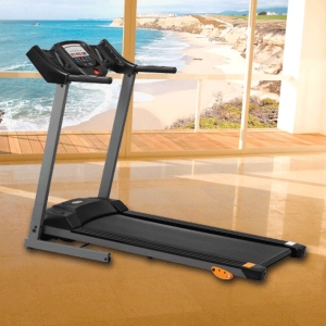 FW 100 Treadmill
