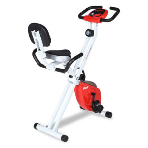 FW Eazy Bike for Home and Gym